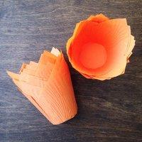 Капсула тюльпан оранжевая 80*50мм