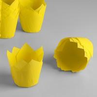 Капсула тюльпан желтая 80*50мм