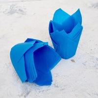 Капсула тюльпан голубая 80*50мм