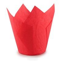 Капсула тюльпан красная 80*50мм